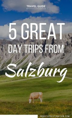 5 Great day trips from Salzburg - Non Stop Destination - The city's location, situated on the border of Austria and Germany, make it perfectly placed for tons of memorable side ventures in both countries. You can take day trips from Salzburg to Munich, or travel via train from Salzburg to Hallstatt, among other fun ideas. Here, we've mapped out all of our top Salzburg day trips for you to try out! | #Salzburg #Austria #Hallstatt #Alps |