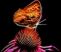 Glowing Butterfly by Kathy McCabe