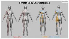 ArtStation - Female Anatomy Tutorial, Donna Urdinov