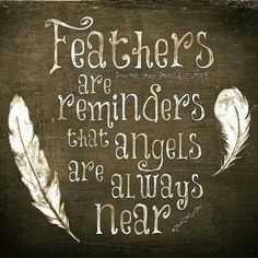 feathers & angels...