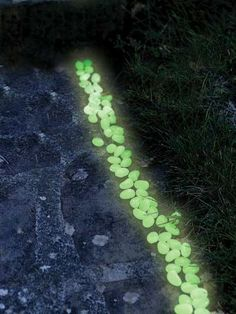 Glow Stones - China Glow Stone. Neat. Soak up sun by day. Ok for the environment? Could add into DIY stepping stones? Have to check out....