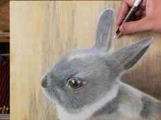 PHOTOS. Les incroyables dessins hyperréalistes de Ivan Hoo vont vous surprendre