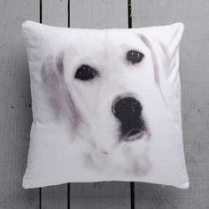 dog decorative pillow