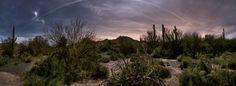 Desert Night | Dan Goodman Photography