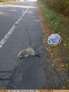 Get Well Soon? I laughed a little too hard at this...