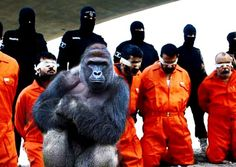 THE MEDIA'S ANTI CHRISTIAN AGENDA: The Media Research Center (MRC) has revealed that mainstream media devoted some six times as much air time to covering the recent death of Harambe the gorilla than they did to the gruesome Islamic State decapitation of 21 Coptic Christians on a Libyan beach last year. So what does that tell you? http://www.nowtheendbegins.com/liberal-media-gave-6-times-coverage-gorilla-death-isis-killing-christians/
