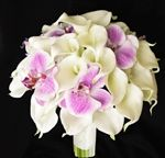 Simple, clean white calla lilies with purple orchids