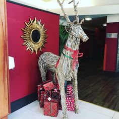 So apparently it's just over 70 sleeps until Christmas - not that this explains why Rudolph is already hanging about the lobby at the Normandy Hotel in Renfrew!  Was in today chatting with the team about Christmas social media campaigns and Facebook advertising.  #socialmediatraining #facebookforbusiness #christmas #alwayslearning #santa #rudolph #renfrewshire #hotel #normandy