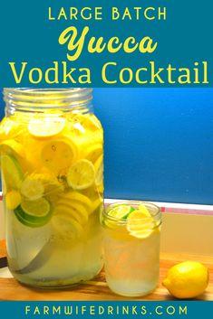 Summer Drink Recipes, Alcohol Drink Recipes, Punch Recipes, Summer Drinks, Summer Fun, Vodka Lemonade Drinks, Vodka Cocktails, Alcoholic Drinks, Beverages