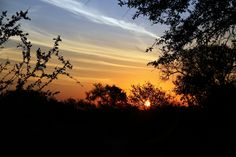 Beautiful Sunset, Sunsets, Safari, Wildlife, Celestial, Country, House, Outdoor, Outdoors