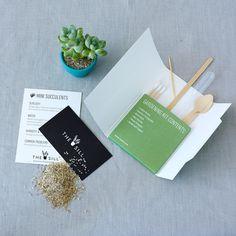 Miniature Gardening Kit
