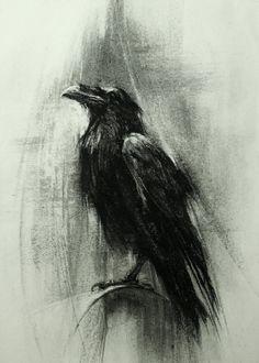 Résultats de recherche d'images pour « charcoal raven flying away »