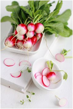 The First Radishes of The Spring