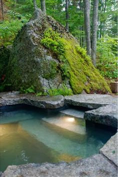 Hard to find moss in Utah. Harder to create faux moss for an indoor nature scape.