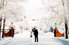 Winter Snow Wedding Romance