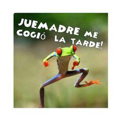 JUEMADRE ME COGIÓ LA TARDE.