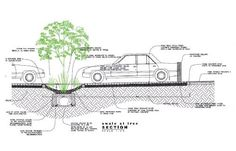 vegetated swale - Google Search