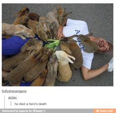 Attack of the bunnies