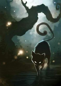 Cat coming out of the dark mysterious