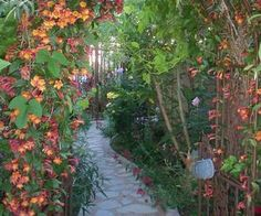 s 9 budget ways to make your walkway look even better than last year, concrete masonry, gardening