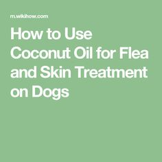 How to Use Coconut Oil for Flea and Skin Treatment on Dogs