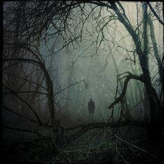 spooky,creepy and haunting The Dark Side, Alone In The Dark, Arte Horror, Dark Photography, Dark Forest, Tree Forest, Dark Places, Dark Fantasy, Belle Photo