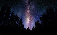 THE MILKY WAY outer space poster BEAUTIFUL COLORS LIGHT STARS trees 24X36-YY1
