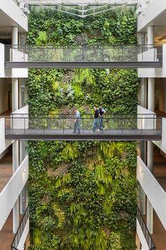 Indoor vertical garden By SUNDAR ITALIA Garden Architecture, Futuristic Architecture, Sustainable Architecture, Building Architecture, Architecture Design, Vertical Garden Plants, Vertical Garden Design, Eco Garden, Home And Garden