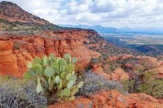 Sedona Photograph - Desert Landscape by Alexey Stiop