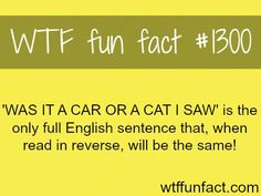MORE OF WTF FACTS are coming HERE Words, Celebs , movies and fun facts http://ibeebz.com