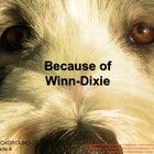 The CA Treasures, Grade 4, Unit 1, Because of Winn-Dixie  Common Core Standards (CCS) resource is a teacher resource that supports the Macmillan/Mc...
