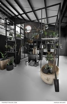 Minimalistic home decor inspiration with black earthy ceramics and touches of copper and greenery | The ulitmate kitchen decor inspirations