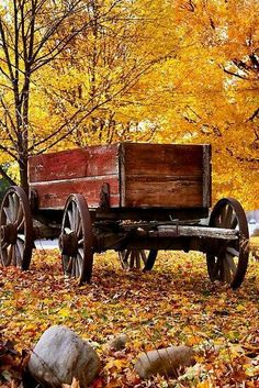Picture of Antique Wagon and autumn colors stock photo, images and stock photography. Landscape Design Plans, Landscape Architecture Design, Landscape Edging, Country Landscaping, Front Yard Landscaping, Cool Landscapes, Landscape Paintings, Little Red Wagon, Landscaping Supplies