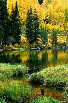Beautiful World, Beautiful Places, Vida Natural, Autumn Scenery, Water Art, Fall Wallpaper, Silver Lake, Nature Scenes, Watercolor Landscape