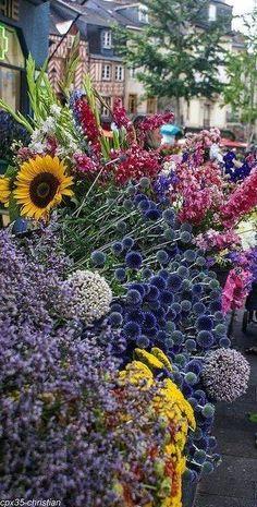 Saturday flower market in Rennes, Brittany
