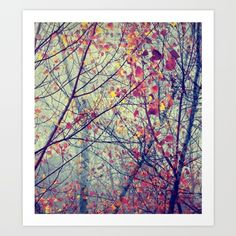 trees+Art+Print+by+Ingrid+Beddoes+-+$19.00