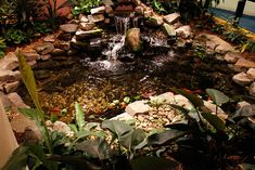 1000 Images About Indoor Ponds On Pinterest Indoor Pond Indoor Waterfall And Ponds
