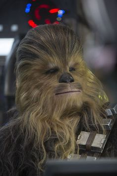 "Star Wars ""The Force Awakens"" Chewbacca (Chewie) Star Wars Holonet, Film Star Wars, Star Wars Characters, Star Wars Episodes, Bon Film, Star Wars Tattoo, Episode Vii, Last Jedi, Love Stars"