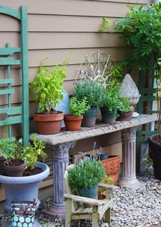 potting table herb and vegetable garden