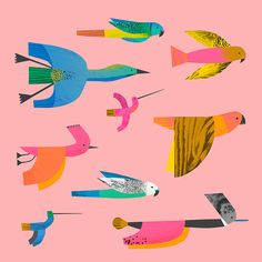 "portermoto: "" natashadurley: "" Bird experiments. "" By Natasha Durley, Illustrator and Surface pattern designer """