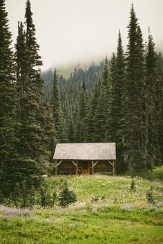 Little Cabin on the Wonderland Trail in Washington Cabana, Wonderland Trail, Cabin In The Woods, Little Cabin, H & M Home, Cabins And Cottages, Log Cabins, Rustic Cabins, Cozy Cabin