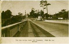 View down Forest Drive, Pinelands by DanieVDM, via Flickr View Image, Sidewalk, River, City, Garden, Garten, Walkways, City Drawing, Gardening