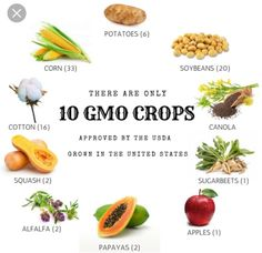 ・・・ There are only 10 GMO crops commercially avai. by Talks Food Types Of Agriculture, American Agriculture, Agriculture Farming, Ag Day, Farmer's Daughter, Food Facts, Beets, Squash, Orange Juice