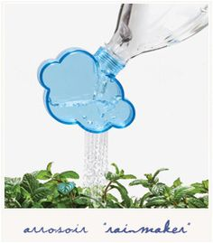 * Rainmaker chez Bird on the wire (shop)
