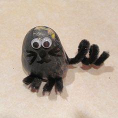Pet Rock Photographs: Pet Rock Cat Photo