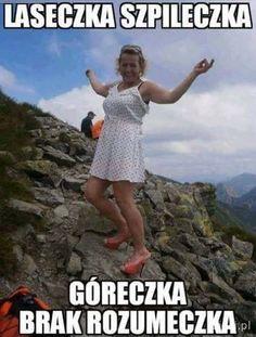 Pin by Władysława on Kawały Polish Memes, Very Funny Memes, Reaction Pictures, Good Mood, Best Memes, Nice View, Sarcasm, Haha, Have Fun