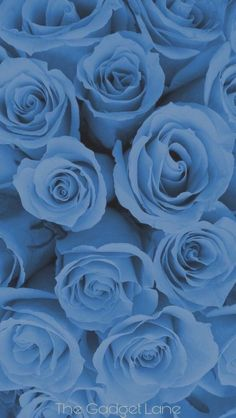 Blue wallpaper iphone - List of Latest Blue Background for Android Phone Today – Blue wallpaper iphone Light Blue Aesthetic, Blue Aesthetic Pastel, Aesthetic Pastel Wallpaper, Aesthetic Colors, Aesthetic Backgrounds, Aesthetic Wallpapers, Aesthetic Vintage, Aesthetic Pictures, Aesthetic Women