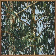 JUDITH SINNAMON represented by Edwina Corlette Gallery - Contemporary Art Brisbane