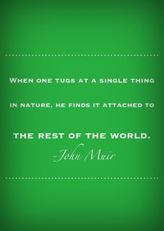 We are irrevocably connected. we can change the whole by changing the part. Change enough parts & a sudden phase transition occurs in the whole. Green Quotes, New Quotes, Inspirational Quotes, John Muir, Nature Quotes, Inspire Me, Wise Words, Favorite Quotes, Quotations