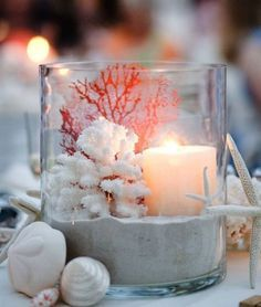 Create beautiful arrangements in glass hurricanes: http://beachblissliving.com/beach-candle-holders/ Use as decor accents and table centerpieces.